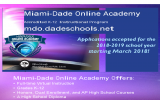 Miami-Dade Online Academy