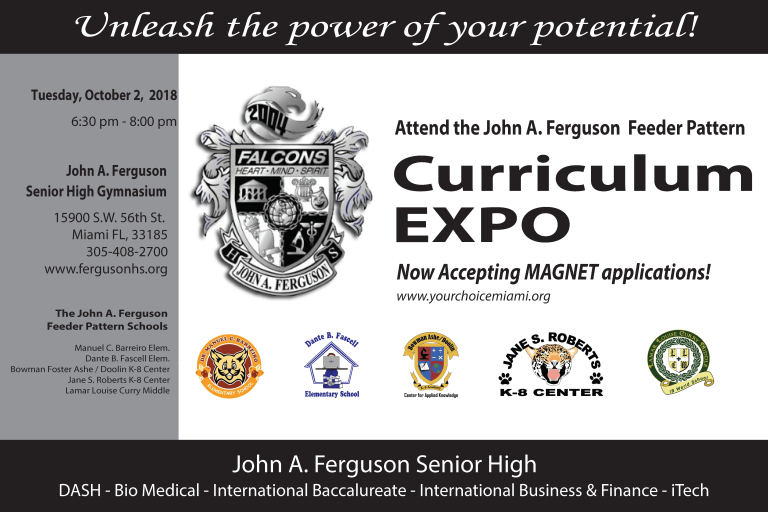 Curriculum EXPO Revised flyer 2018